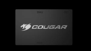 COUGAR Core Box