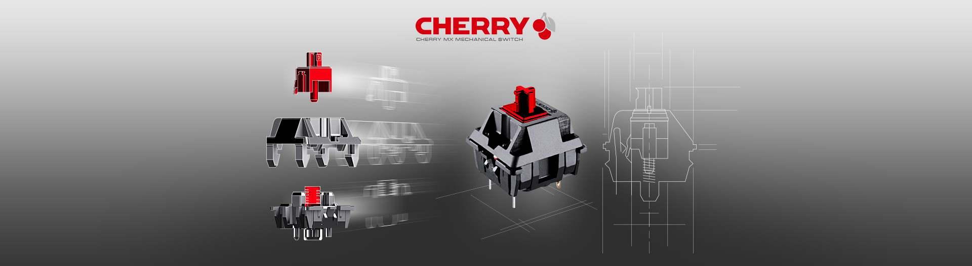 COUGAR PURI - Cherry MX Mechanical Gaming Keyboard - COUGAR