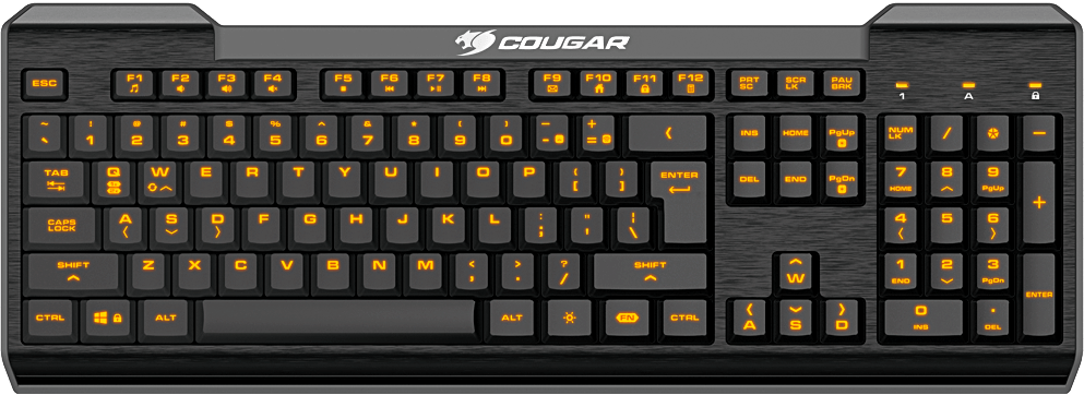 COUGAR 200K - Enter the Game